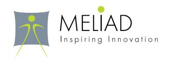 Alrm, partenaire de meliad qui propose le décapage, le nettoyage et la préparation de surface par laser,